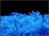 Ice crystal - Raureif