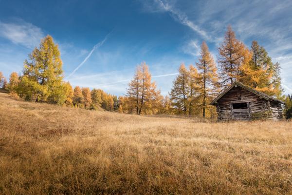 Herbst mit Hütte